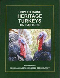How to Raise Heritage Turkeys on Pasture