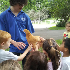 Erin O'Connell teaches kids about rare breed poultry