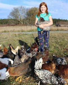 Tilley Donohoe with a flock of heritage chickens