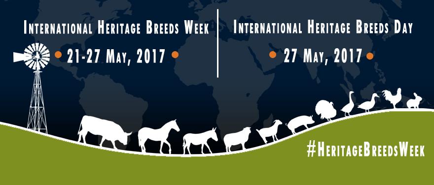 International Heritage Breeds Week 2017
